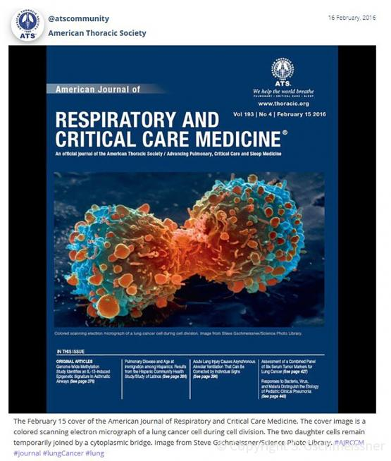 Respiratory and critical care